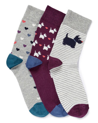 Pack of 3 Comfort Top Dog Socks